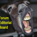 Forum Editorial is Foolish About SB-2076
